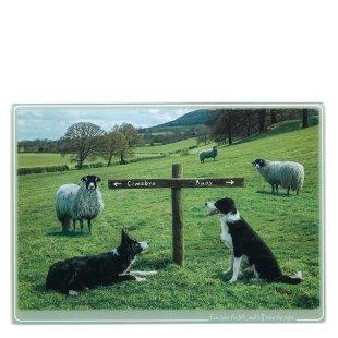 Ewe Take the Left Trivet Large