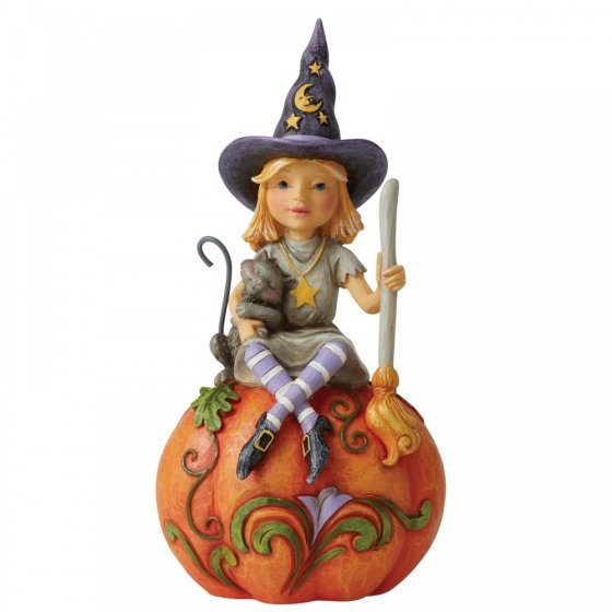 Frequent Flyer (Witch Sitting on Pumpkin Pint-Sized)