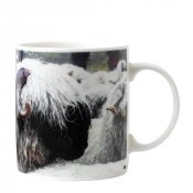 Valais Blacknose Sheep Mug