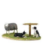 Ewe Take the Left (Herdwick)