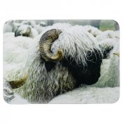 Valais Blacknose Sheep Place Mats (Set 4)