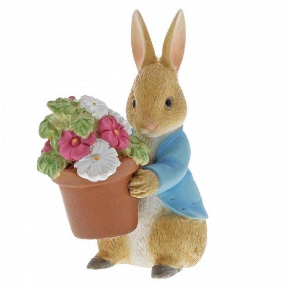 Peter Rabbit Brings Flowers
